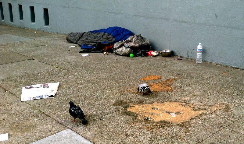 Poverty Is Primitive