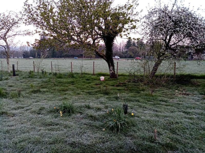 Understanding frost