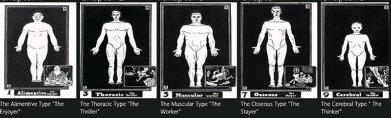 The Five Types of People. Alimentive, Thoracic, Muscular, Osseous, Cerebral (Pt. 1 of 6)